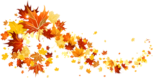 fall_leaves_transparent_picture