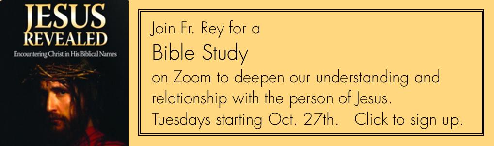 Jesus Revealed Bible Study slider 10-20